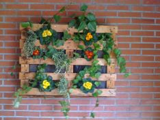 Hanging garden at school .jpg